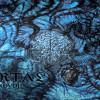 Portal: Vexovoid