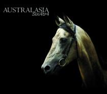 Australasia: Sin4tr4