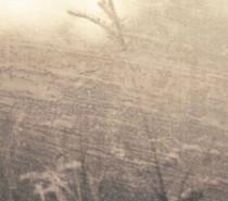Квітів Знедолених Берегів – За небокрай мрій