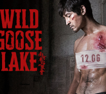 The Wild Goose Lake (Modern Chinese Gangster Noir is Okay)